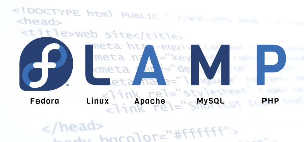 flamp-featured-image